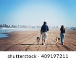 Stock photo father and daughter walking their dogs along the beach in mar del plata argentina 409197211