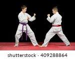 two boys in white kimono... | Shutterstock . vector #409288864