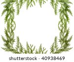 green branch isolated on white | Shutterstock . vector #40938469