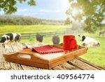 rural green landscape of farm... | Shutterstock . vector #409564774