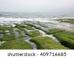 green rocky on the shore | Shutterstock . vector #409716685