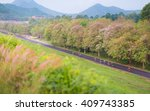 cyclists ride along bike path... | Shutterstock . vector #409743385