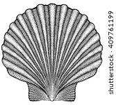 scallop shell illustration   Shutterstock .eps vector #409761199