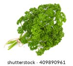 fresh green parsley isolated on ... | Shutterstock . vector #409890961