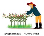 agriculturist manure chili... | Shutterstock .eps vector #409917955