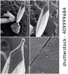 Small photo of Nanotechnology collage. Process of ternary alloy InGaAs crystal (whisker) growth. Crystallization or solidification process view through the electron microscope with multiple increase in (zoom in)