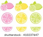 citrus fruit | Shutterstock .eps vector #410237647