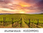 Napa Valley Vineyards Spring...