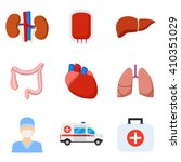 set of internal human organs... | Shutterstock .eps vector #410351029