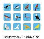 collection of various birds... | Shutterstock .eps vector #410375155