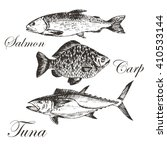 vector fish silhouettes hand...   Shutterstock .eps vector #410533144