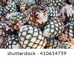 agave heart   Shutterstock . vector #410614759