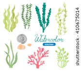 Set Of Watercolor Seaweed ...