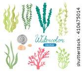 Set Of Watercolor Seaweed ...