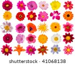 flowers  decorative  collection | Shutterstock . vector #41068138