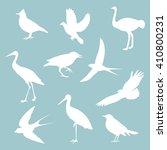 different birds on blue... | Shutterstock .eps vector #410800231