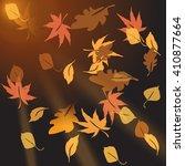 Multi Colored Autumn Leaves ...