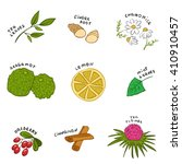 herbal ingredients for a cup of ... | Shutterstock .eps vector #410910457