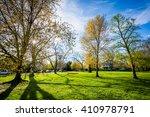 the sun shining through trees... | Shutterstock . vector #410978791