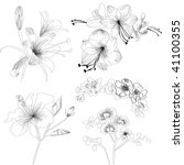 sketch with flowers | Shutterstock .eps vector #41100355