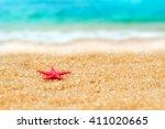 Small Figure Of Starfish  In...