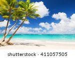 Stock photo coconut palm trees on white sandy beach in punta cana dominican republic 411057505