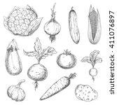 farm fresh sweet corn  carrot... | Shutterstock .eps vector #411076897