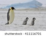Stock photo emperor penguins with chick 411116701