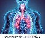 3d illustration of larynx...