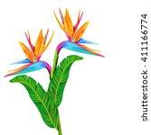 tropical flowers vector pattern | Shutterstock .eps vector #411166774