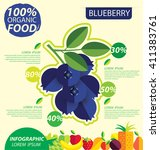 blueberry. infographic template.... | Shutterstock .eps vector #411383761