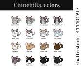 set of some common chinchilla... | Shutterstock .eps vector #411401917