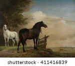 Two Horses In A Meadow Near A...