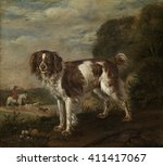A Spaniel  By Paulus Potter ...