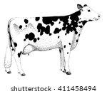 cow illustration old... | Shutterstock . vector #411458494