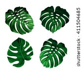 set of leaves monstera | Shutterstock .eps vector #411504685