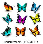 Stock vector collection of colorful butterflies flying in different directions vector 411631315