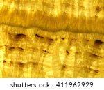 detail of a translucent slice... | Shutterstock . vector #411962929