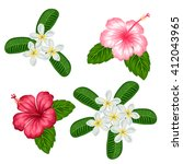 set of tropical flowers... | Shutterstock .eps vector #412043965