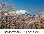 mt fuji and cherry blossom | Shutterstock . vector #412245541