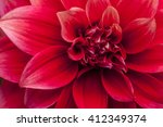 Macro Image Of A Red Dahlia...