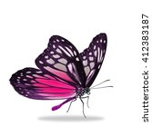 Stock photo beautiful black and pink butterfly isolated on white background 412383187