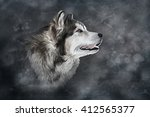 Drawing Dog Alaskan Malamute O...