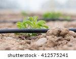 drip irrigation | Shutterstock . vector #412575241