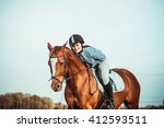 Stock photo young beautiful woman rides a horse wearing a helmet horseback riding 412593511