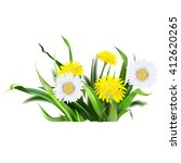 dandelion  green grass  yellow... | Shutterstock .eps vector #412620265