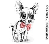 chihuahua puppy portrait in a... | Shutterstock .eps vector #412805479