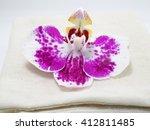 orchid flower on the knitting... | Shutterstock . vector #412811485