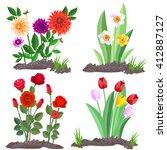 set of garden flowers growing... | Shutterstock .eps vector #412887127