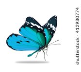 Stock photo beautiful blue monarch butterfly isolated on white background 412930774